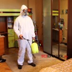 Основные этапы дезинфекции от постельных клопов в вашем доме