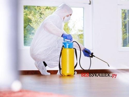 Как убрать квартиру после обработки от клопов - Официальный сайт СЭС