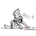 Методы для самостоятельного выведения блох у собаки