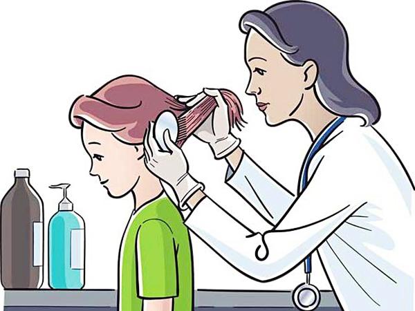 Осмотр на педикулез - алгоритм выявления вшей и гнид у пациентов в лечебных учреждениямх, в стационаре, в школах и детских садах у ребенка, как часто проводится осмотр