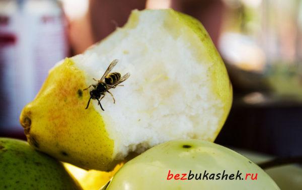 Оса на фруктах