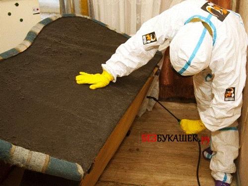 Обработка квартиры от постельных клопов инсектицидами