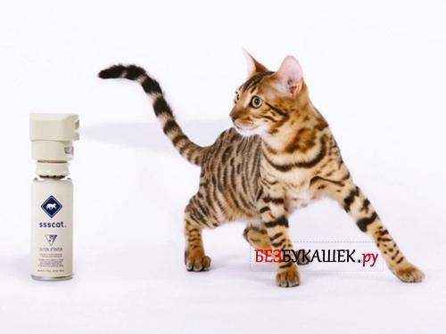 Спрей от блох для кошек