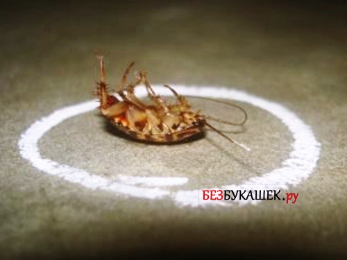 Применение мелка от тараканов