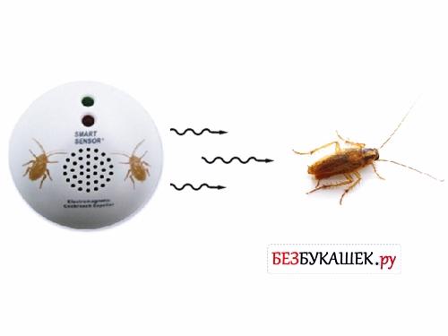 Действие электромагнитного отпугивателя на таракана