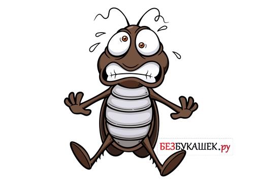 Испуганный таракан