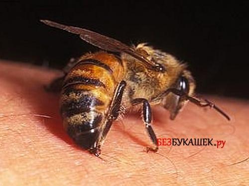 Момент укуса осы