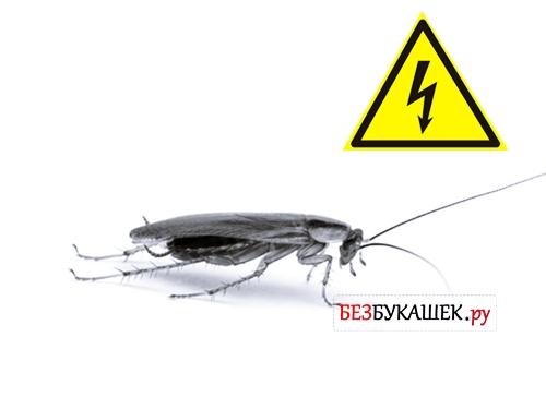 Угроза удара током таракана
