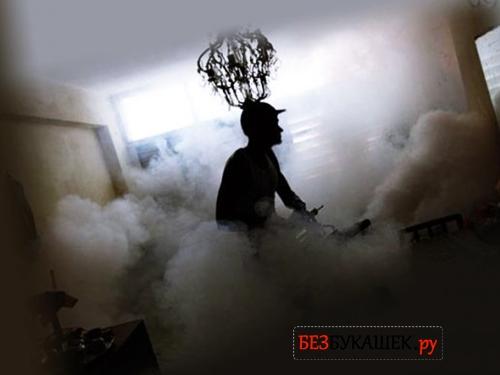 Обработка квартиры от тараканов туманом