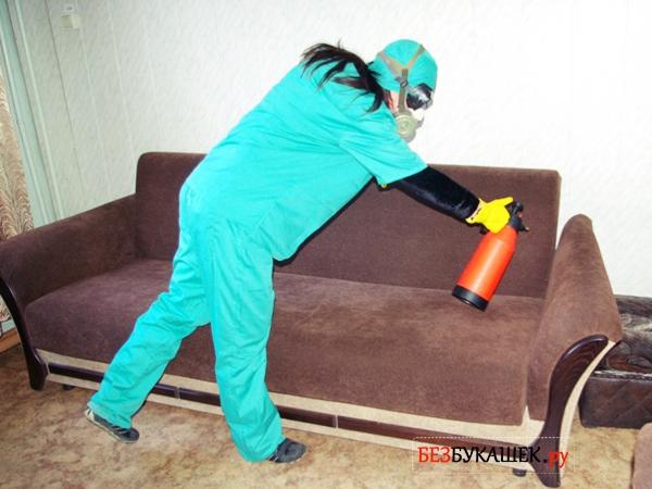 Обработка дивана от клопов