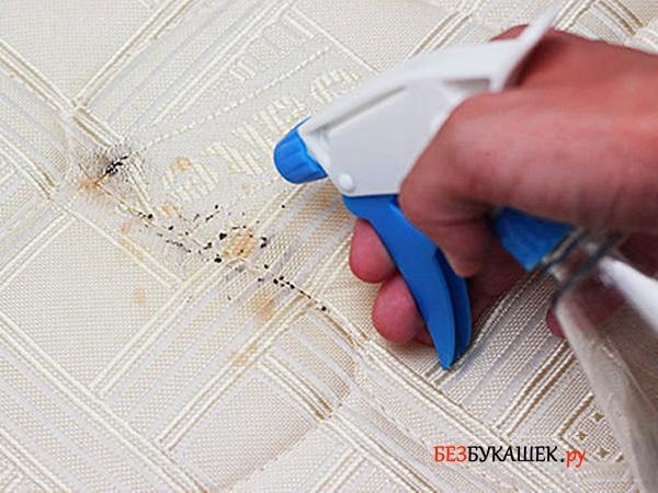 Самостоятельное уничтожение клопов при помощи опрыскивания инсектицидами