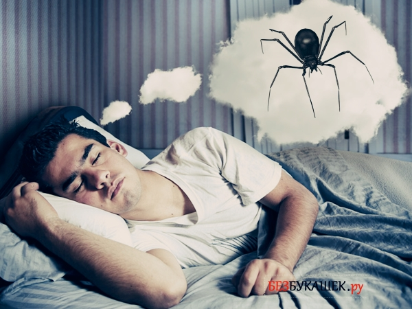 Мужчине снится паук