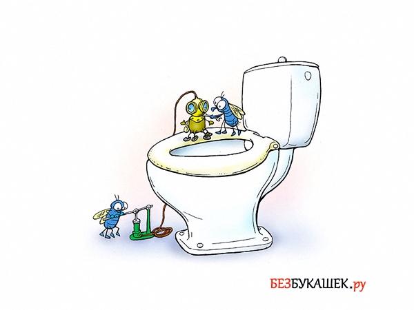 Мухи в туалете