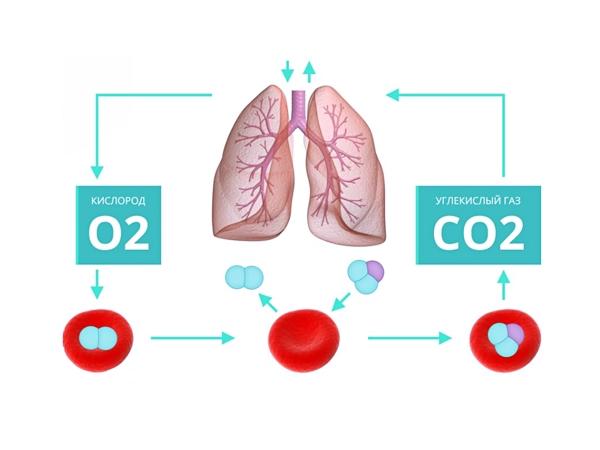 Исходящий CO2